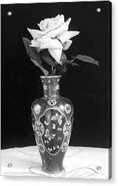 White Rose Antique Vase Acrylic Print