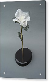 White Rose Acrylic Print by Leslie Dycke