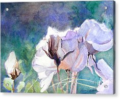 White Roses In The Shade Acrylic Print