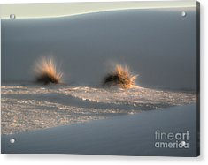 White Sands New Mexico Dune Acrylic Print by Gregory Dyer