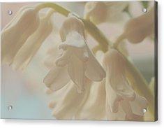 Angelic Springtime Acrylic Print by Connie Handscomb