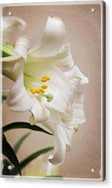 White Softness Acrylic Print