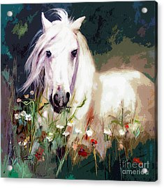 White Stallion In Wildflower Field Acrylic Print by Ginette Callaway