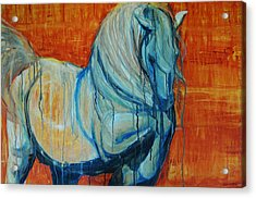 Acrylic Print featuring the painting White Stallion by Jani Freimann