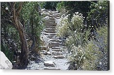 Acrylic Print featuring the photograph White Steps by Philomena Zito