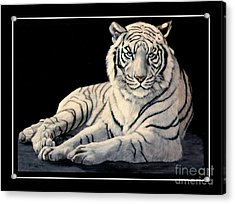 Acrylic Print featuring the painting White Tiger by DiDi Higginbotham