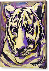 White Tiger Not Acrylic Print
