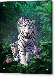 White Tigers Acrylic Print by Jerry LoFaro