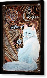 White Turkish Angora Acrylic Print by Leena Pekkalainen