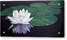 White Water Lilly Acrylic Print by Birgit Coath