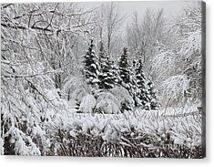 White Winter Day Acrylic Print