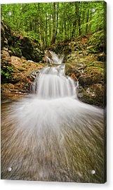 Whittier Falls Acrylic Print