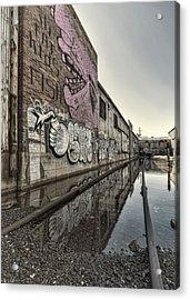 Who Dat Acrylic Print by Stellina Giannitsi