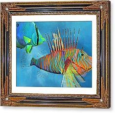 Who Framed The Fishes Acrylic Print