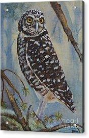 Whoo Cares Acrylic Print by Jana Baker