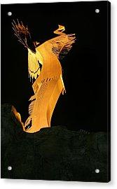 Wichita Nights Acrylic Print by JC Findley