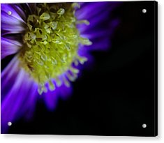 Acrylic Print featuring the photograph Wicked Lovely by Susan Maxwell Schmidt