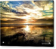 Wide Open Acrylic Print by Margie Amberge