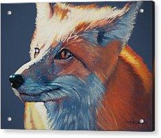 Wilbur Fox Acrylic Print