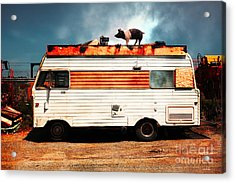 Wilbur The Pig Goes On Vacation 5d22705 Acrylic Print by Wingsdomain Art and Photography