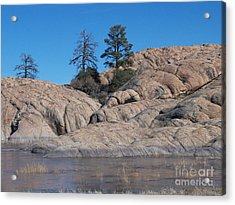 Willow Lake Number One Color Acrylic Print by Heather Kirk