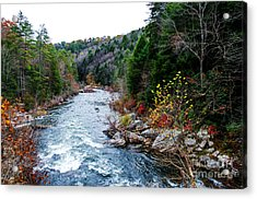 Wild And Scenic Obed River Acrylic Print