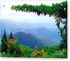Wild Azalea View Acrylic Print