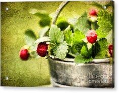 Wild Berries Acrylic Print by Darren Fisher