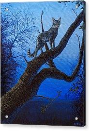 Wild Blue Acrylic Print by Cara Bevan