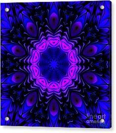 Acrylic Print featuring the digital art Wild Blue by Hanza Turgul