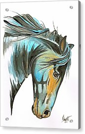 Wild Courage Acrylic Print by Robyn Green