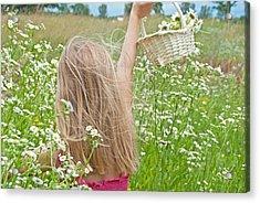 Wild Daisy Field Acrylic Print by Maria Dryfhout
