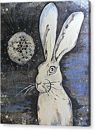Wild Eyed Hare Acrylic Print by Laura Heilman