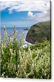 Wild Flowers At Pololu Acrylic Print