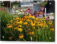 Wild Flowers By The Lake Acrylic Print by Thomas Fouch