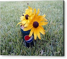 Wild Flowers Acrylic Print by Jenna Mengersen
