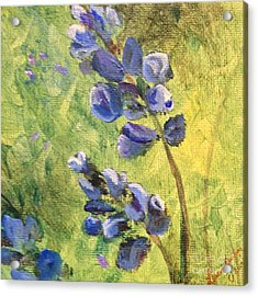 Wild Flowers Acrylic Print by Laurianna Taylor