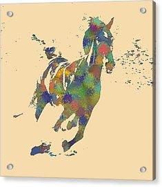 Wild Horse Acrylic Print by Soumya Bouchachi