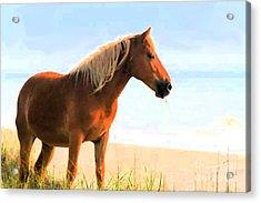 Wild Horses Can't Tear Me Away Acrylic Print