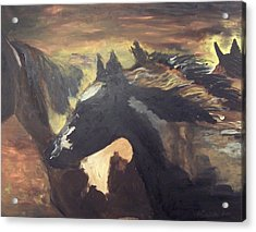 Wild Horses Acrylic Print by Krista Ouellette