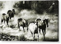 Wild Hosses Re Edited  Acrylic Print by Robert Rhoads