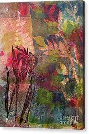 Wild Iris Acrylic Print by Cynthia Lagoudakis