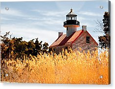 Wild Lighthouse Acrylic Print
