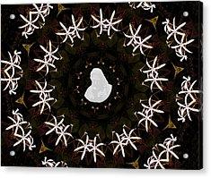 Wild Lily Kalidescope Acrylic Print by Rosalie Scanlon