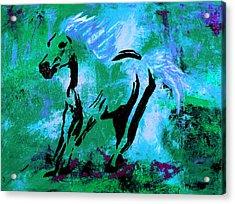 Wild Midnight Acrylic Print by Nan Bilden