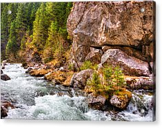 Wild Mountain River Acrylic Print