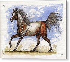 Wild Mustang Acrylic Print by Angel  Tarantella