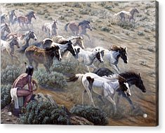 Wild Mustangs Acrylic Print by Gregory Perillo