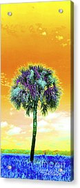 Wild Palm 5 Acrylic Print