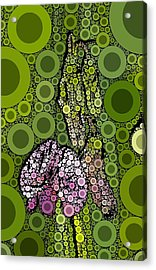 Wild Pea Abstracted Acrylic Print